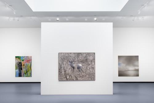 Gerhard Richter  © Fondation Louis Vuitton Martin Argyroglo  © Gerhard Richter.jpeg