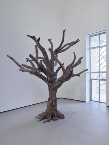 Tree%2C 2010 - Ai Weiwei_©Fondation Louis Vuitton%2C Marc Domage.jpg